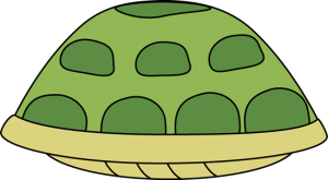 turtle-shell risk tips and strategies