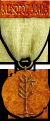 Mesopotamia Bronze Risk Game Medal